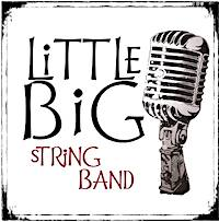Come hear the vintage swing music of Little Big String Band with the Mecklenburg SAR on November 8 2018.