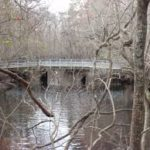 Moore's Creek Bridge
